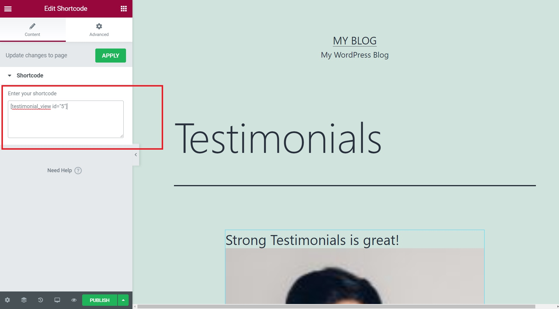 paste Strong Testimonials shortcode in Elementor